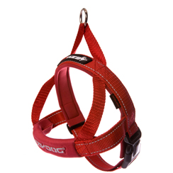 EZYDog-quick-fit-harness