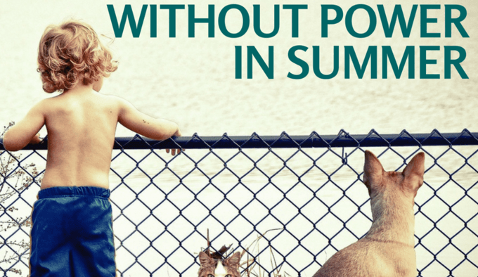 Keeping pets safe without power in summer