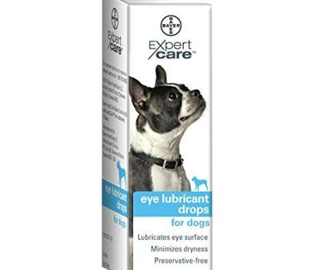 Help Your Dog See More Clearly with #BayerExpertCare