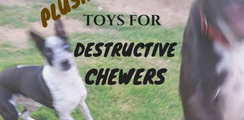 Plush toys for destructive chewers