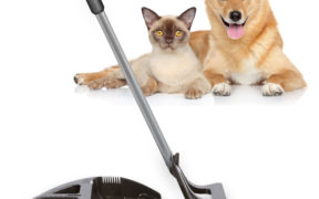 Cleaning Gadgets for Pets