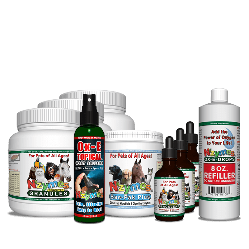 Nzymes for pets - natural gut health