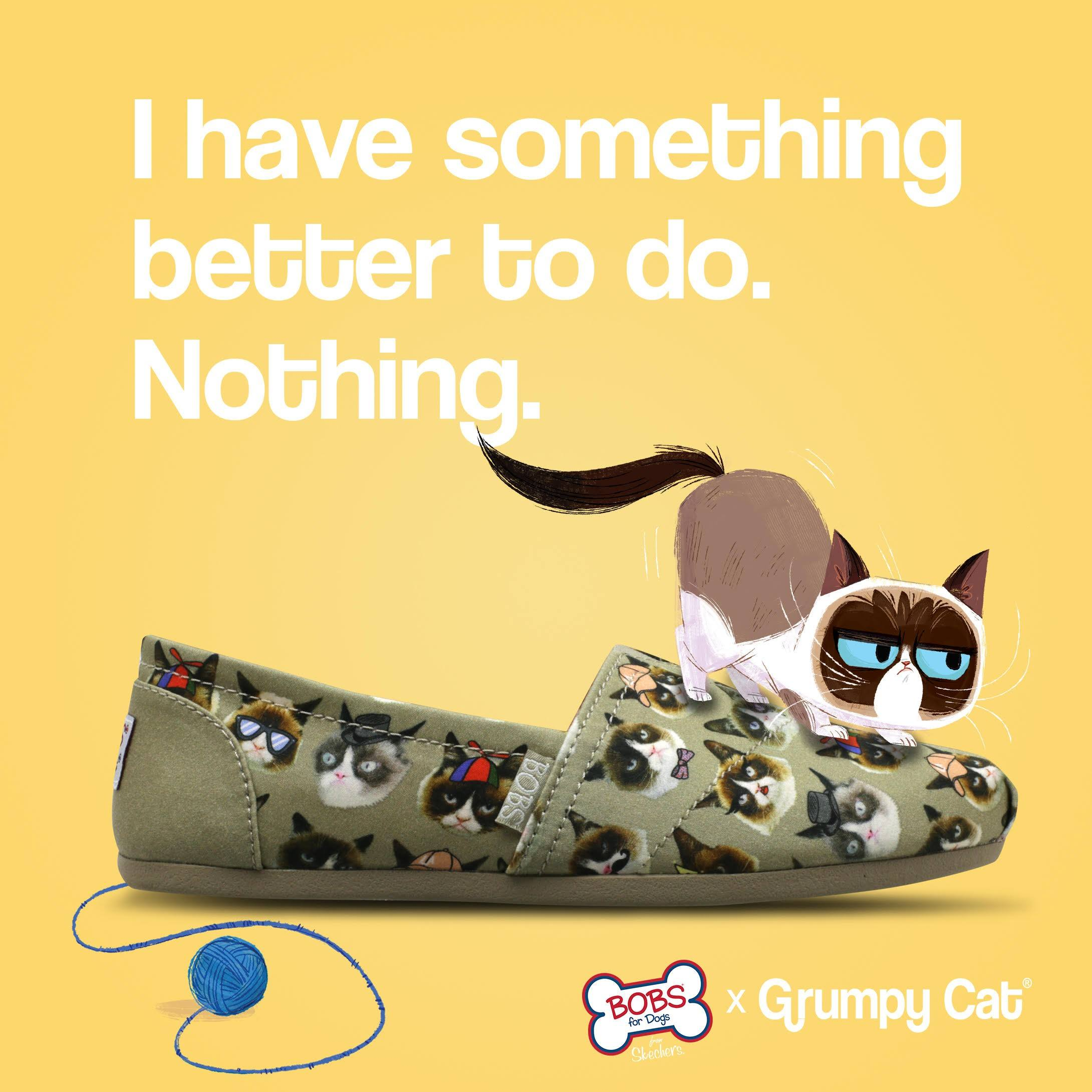 c46112ff81d41 Grumpy Cat and Sketchers Shoes Team Up for Animal Rescue - PetsWeekly.com