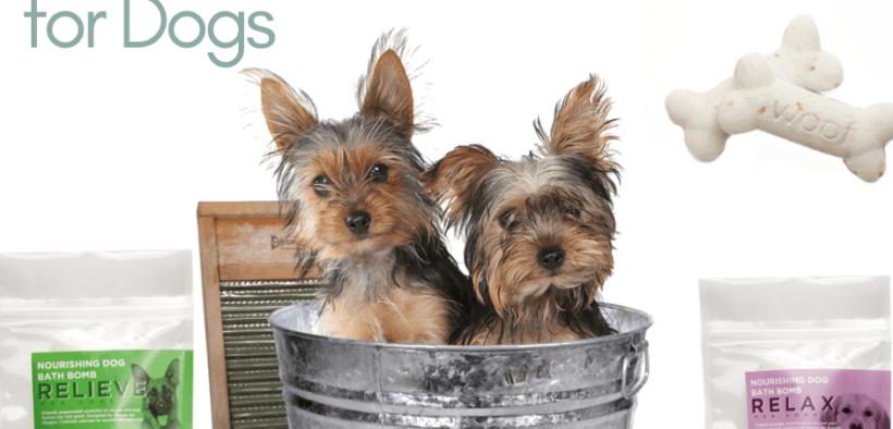 cbd bath bomb for dogs
