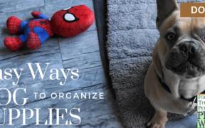 organize dog supplies