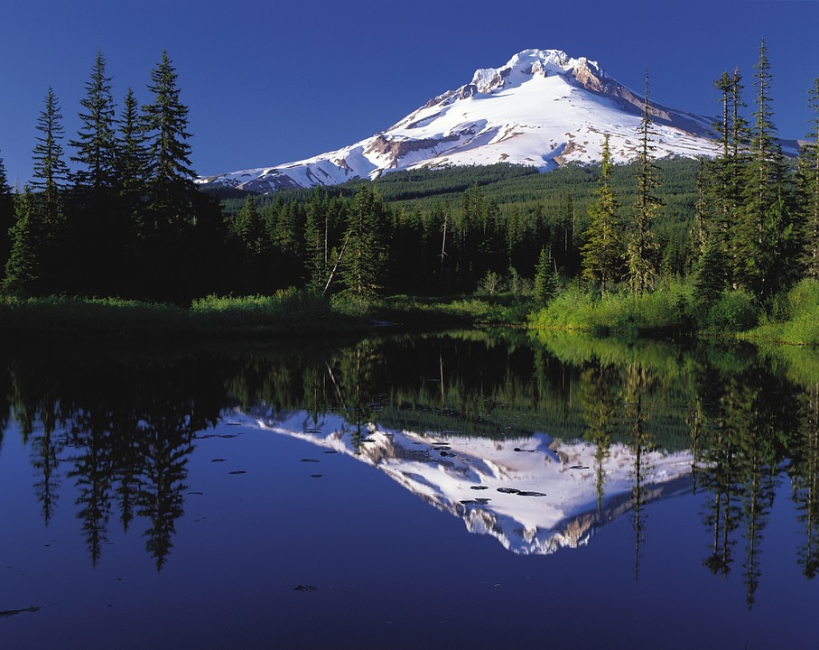 dog-friendly portland mount hood