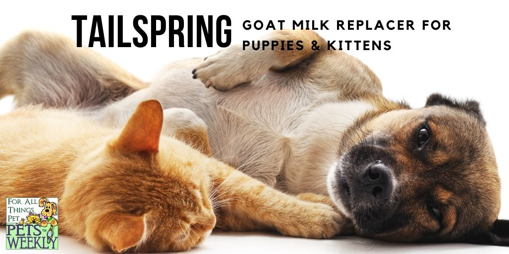 Goat Milk Replacer for Puppies & Kittens