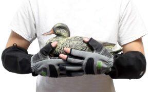 armorhand gloves